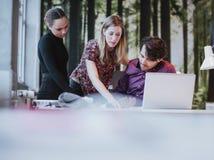 Junge weibliche Exekutive, die ihre Ideen Kollegen darstellt stockfotos