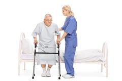Junge weibliche Krankenschwester, die einem älteren Patienten mit einem Wanderer hilft Stockbild