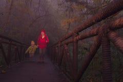 Junge weibliche Wanderer- und Sohnüberfahrtbrücke im nebelhaften Wald Lizenzfreie Stockfotografie