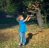 Junge wirft Blätter Stockfoto