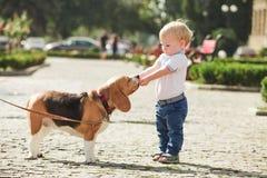 Junge zieht den Hund ein Stockfotografie