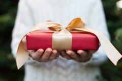Junge zur Weihnachtszeit Lizenzfreie Stockfotografie