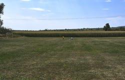 Junge zwei, der Fußball in einem Bauernhof von Mais in Europa spielt lizenzfreie stockfotos