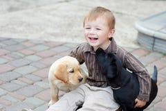 Jungen, die mit zwei Hunden Labrador Schwarzweiss spielen Lizenzfreie Stockfotos