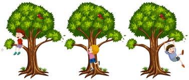 Jungen, die oben den Baum klettern Lizenzfreie Stockfotos