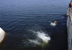 Jungen-Fluss und genießen, an der Verdammung zu schwimmen lizenzfreies stockfoto