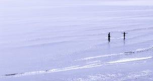 Jungen im Meer Stockbild