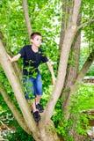 Jungen-kletternder Baum, der rechts schaut Lizenzfreies Stockfoto