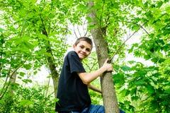 Jungen-kletternder Baum, der unten schaut Stockfotos