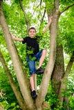 Jungen-kletterndes Baum-Lächeln Stockfoto