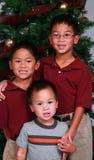 Jungen mit Weihnachtsbaum stockfoto