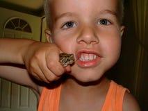 Jungen und gruselige crawlies Stockfotografie