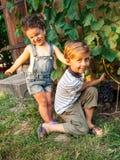 Jungen- und Mädchensammelntrauben Stockfotos
