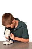 Jungen-Wissenschaftler stockfotos