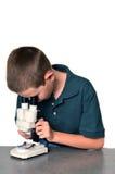 Jungen-Wissenschaftler stockbild