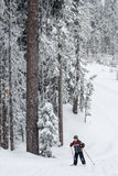 Jungencross country-Skifahren Lizenzfreies Stockbild