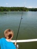 Jungenfischen Lizenzfreie Stockfotos