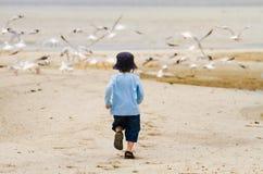 Jungenkind, das Seemöwen am Strand jagt Lizenzfreie Stockbilder