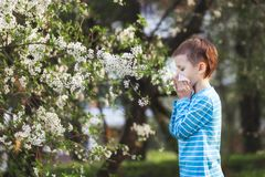 Jungenniesen im Park vor dem hintergrund eines blühenden Baums, weil er allergisch ist lizenzfreies stockbild