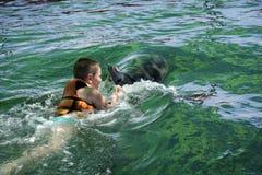 Jungenschwimmen mit hinterer Ansicht des Delphins stockbild