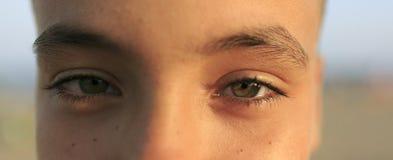 Jungensonderkommando des grünen Auges Stockfotos
