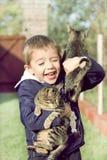 Jungenspiele mit Kätzchen Stockfoto