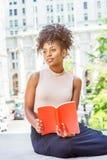 Junger Afroamerikaner-weiblicher Student, der in neuem Yo studiert lizenzfreie stockfotos