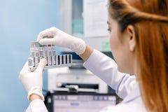 Junger asiatischer Forscher, der die Flasche in der Wissenschaftsarbeit betrachtet Lizenzfreie Stockfotos