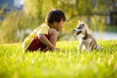 Junger asiatischer Junge, der mit Welpen auf Gras spielt Lizenzfreie Stockfotografie