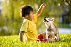 Junger asiatischer Junge, der mit Welpen auf Gras spielt lizenzfreie stockfotos