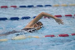 Junger asiatischer Mädchenschwimmenfreistil Stockfotografie