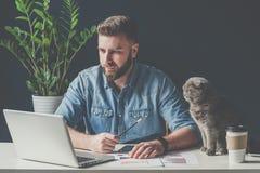 Junger bärtiger Geschäftsmann sitzt im Büro, unter Verwendung des Laptops und Funktion, nahe bei Schreibtisch ist graue Katze Stockbild