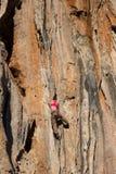 Junger Bergsteiger, der durch eine Klippe hängt Lizenzfreie Stockfotografie