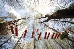 Junger Bergsteiger gehen auf eine Hängebrücke Lizenzfreies Stockfoto