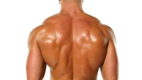 Junger Bodybuilderathlet bildet Muskelnahaufnahme aus stock video footage