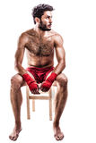 Junger Boxer Stockfoto