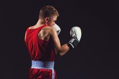 Junger Boxer in der roten Form Stockbilder