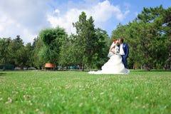 Junger Braut- und Bräutigamweg in der Natur Stockbild