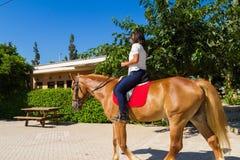 Junger Brunette auf einem braun-blonden Pferd in Lizenzfreies Stockbild