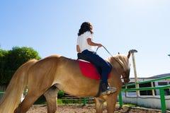 Junger Brunette auf einem braun-blonden Pferd im Reitverein Stockfotografie