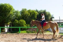Junger Brunette auf einem braun-blonden Pferd im Reitverein Lizenzfreie Stockfotos