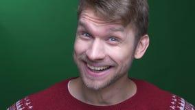 Junger brunette Geschäftsmann in der Strickjacke lächelnd seiend extrem glücklich auf grünem Hintergrund stock video footage