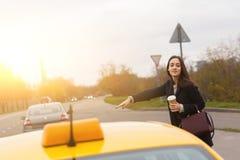 Junger Brunette mit Burgunder-Tasche gelbes Taxi strossenweise gewinnend stockfoto