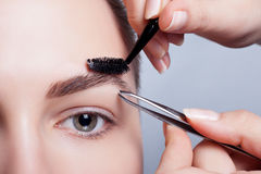 Junger Brunette mit Frauenmake-up des kurzen Haares Mädchen Kosmetik Stockfotos