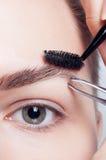 Junger Brunette mit Frauenmake-up des kurzen Haares Mädchen Kosmetik Stockbilder