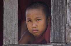 Junger buddhistischer Mönch auf Myanmar (Birma) Stockfotografie