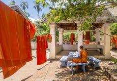 Junger buddhistischer Mönch studiert nahe bei den orange Messröcken, die heraus in die Sonne ausgedehnt werden, um in Luang Praba stockfotos