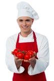 Junger Chef, der frische Tomaten hält lizenzfreie stockfotografie
