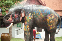 Junger fantastischer Elefant, der Wasser spielt. Lizenzfreies Stockbild