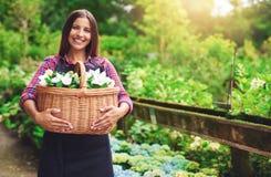Junger Florist, der im Gewächshaus arbeitet Stockbilder